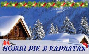 Встречаем Новый год у подножья гор Закарпатья